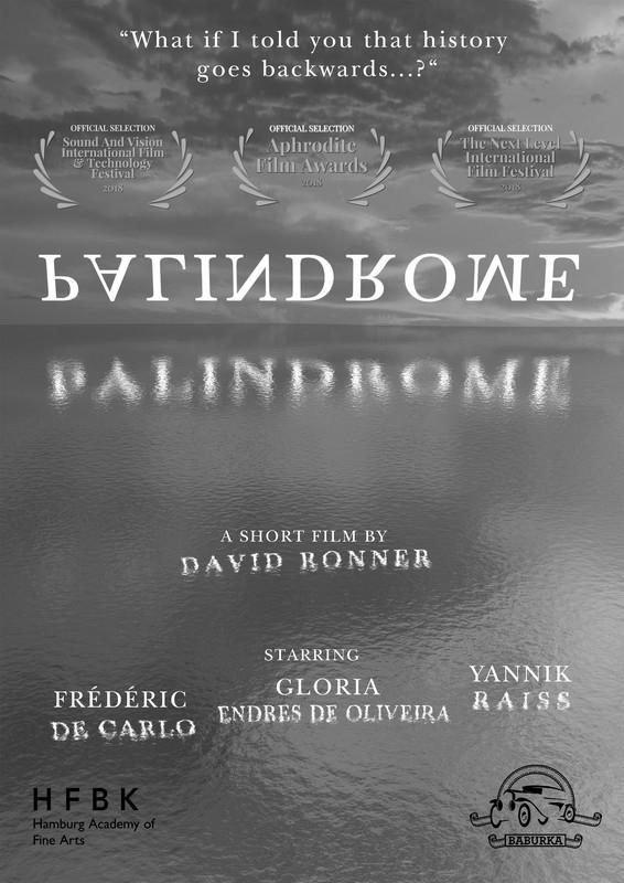 PALINDROME film